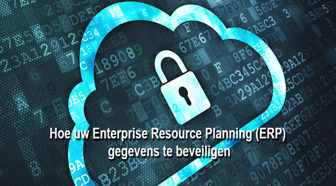 Enterprise Resource Planning (ERP) gegevens beveiligen